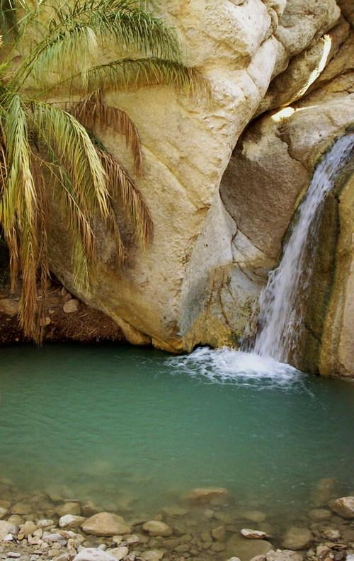 مدينة توزر التونسية Tozeur